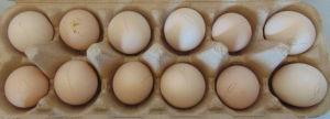 A selection of 12 Pekin bantam eggs from my flock