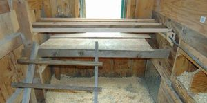Poop or droppings boards in chicken coop make the keepers life much easier